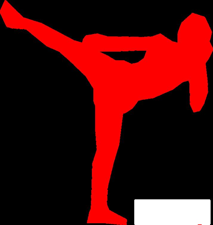 kickboxer-309530_1280