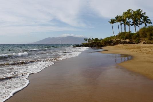beach-772553_640