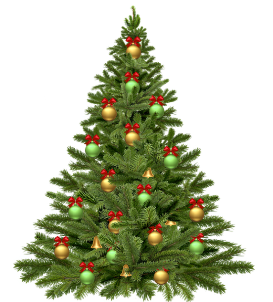 christmas-tree-1808558_640